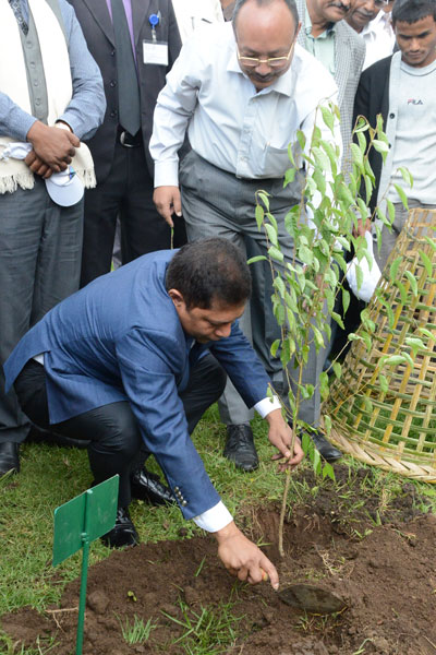 Chief Minister Dr.Mukul Sangma plants a sapling during the World Environment Day observation at Sangmein, Upper Shillong on 5th June 2017
