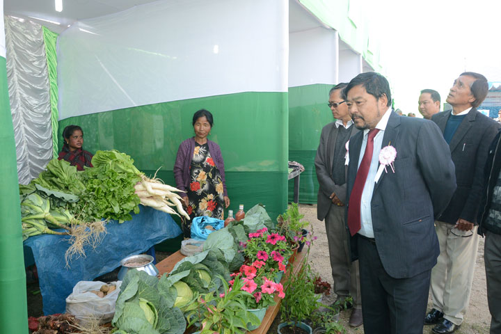 Minister Co-operation Department, Mr. HDR Lyngdoh inspecting the exhibition stalls at the Mini Exhibition cum Sale Festival