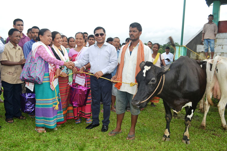 CM Dr Mukul Sangma distributes high yielding Holstein Friesian cows to partners at Ampati 24-07-2017